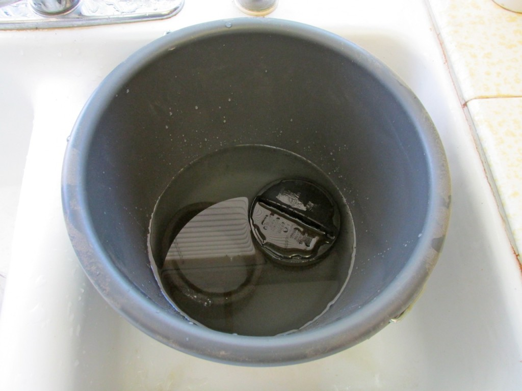 Sterilizing home vacuum filter in bleach